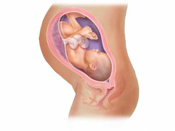 Ребенок часто икает в животе при беременности 38 недель